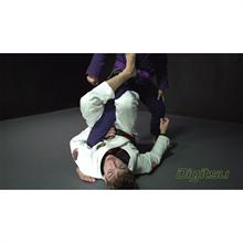 DIGITSU Gianni Grippo Single Leg X-Guard...